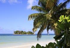 Eiland Chauve Souris in de Indische Oceaan Stock Afbeeldingen