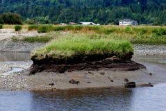 Eiland dat van Riverbank wordt verdeeld Stock Foto's