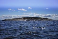 Eiland in het overzees Royalty-vrije Stock Afbeeldingen