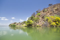 Eiland in Meer Baringo in Kenia Stock Afbeeldingen