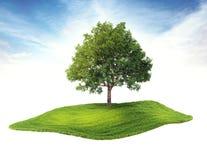 Eiland met boom die in de lucht drijven Stock Afbeeldingen