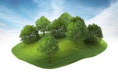 Eiland met bosje die in de lucht drijven Stock Fotografie