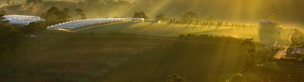 Eiland op de hemel Stock Fotografie