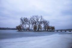 Eiland op het meer en aard in de winter Stock Afbeelding