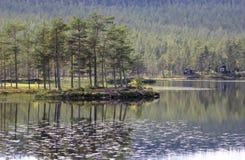 Eiland op Naersjoen royalty-vrije stock afbeelding