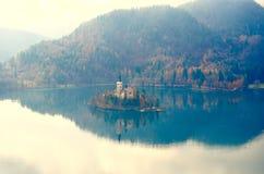 Eiland op Slovenië in daling Royalty-vrije Stock Foto's
