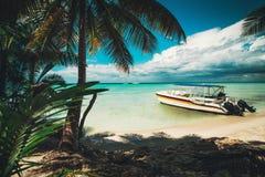 Eiland Saona Palmen en snelheidsboot op het tropische strand, Dominicaanse Republiek stock foto's