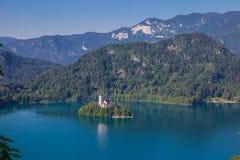 Eiland van Afgetapt in Slovenië stock foto's