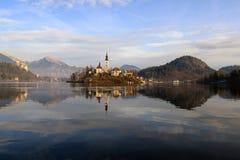 Eiland van Afgetapt, Slovenië Stock Fotografie
