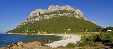 Eiland van Tavolara, Sardinige stock afbeeldingen
