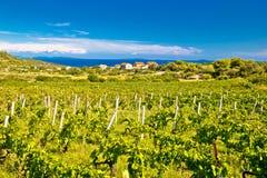 Eiland van Vis-wijngaardenpanorama stock foto