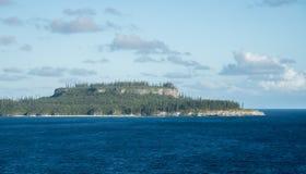 Eilandbos: Nieuw-Caledonië Stock Afbeeldingen