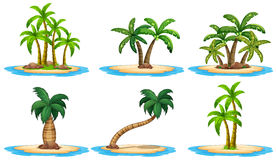 Eilanden en palm royalty-vrije illustratie