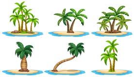 Eilanden en palm Royalty-vrije Stock Fotografie
