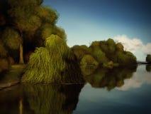 Eilanden van Bomen - het Digitale Schilderen Royalty-vrije Stock Foto