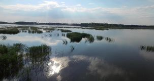 Eilanden van riet in het midden van een brede rivier stock footage