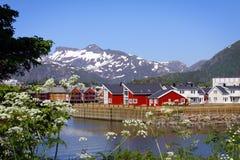 Eilanden VI van Lofoten Stock Foto's