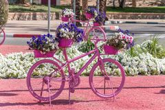 Pink bike with flowers at roundabout. Eilat, Israel - February 9, 2019: Pink bike with flowers at roundabout royalty free stock photography