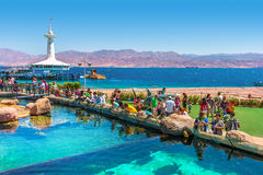 Eilat Underwater Observatory Marine Park. EILAT, ISRAEL - MARCH 31, 2010: Visitors in Marine park - underwater observatory with hundreds of thousands visitors royalty free stock photos