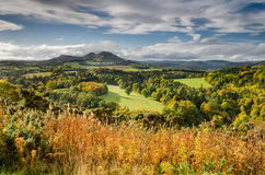 Eildon Hills in autumn. The Eildon Hills in the Scottish Borders was once a lookout point for Iron Age people and Romans Stock Photos