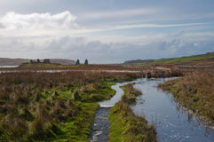 Eilean Mor Loch Finlaggan Royalty Free Stock Photo