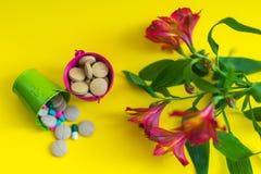 Eimer der Draufsicht zwei voll Pillen mit Blume Lizenzfreie Stockfotografie
