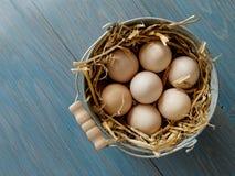 Eimer frische Eier Lizenzfreie Stockbilder