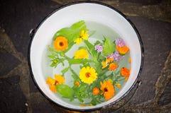 Eimer voll reines Wasser und Blumen Stockbild