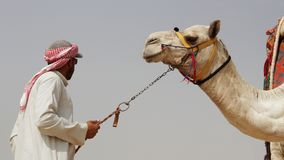 Ein ägyptischer Mann u. ein Kamel Der Himmel im Hintergrund Das outsk lizenzfreie stockbilder