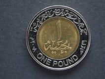 Ein ägyptisches Pfund u. x28; EGP& x29; Lizenzfreie Stockbilder