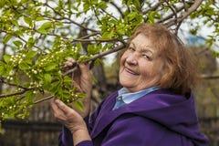 Ein älteres Frauenmodell im Garten Lizenzfreies Stockfoto