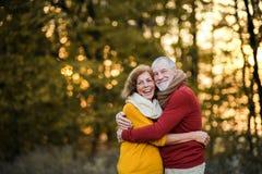 Ein älteres Paar, das in einer Herbstnatur bei dem Sonnenuntergang, umarmend steht Kopieren Sie Platz stockfoto