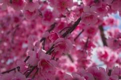 Ein Überfluss an den rosa Blumen vom Stoff Lizenzfreie Stockbilder