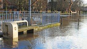 Ein überschwemmter Flussufer Stockfoto