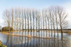 Ein überschwemmtes Feld. Lizenzfreie Stockbilder