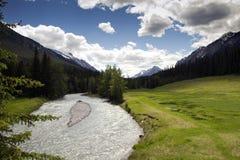 Grünes Tal in den Rockies Lizenzfreie Stockfotos