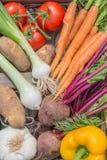 Ein Abschluss herauf Ansicht des frisch ausgewählten Gemüses Lizenzfreies Stockfoto