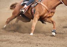 Ein Abschluss herauf Ansicht eines schnellen laufenden Pferde- und Fliegenschmutzes Stockbilder