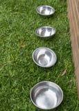 Ein Abschluss herauf Ansicht von vier silbernen Metallschüsseln in einer Linie auf der Grasaußenseite im Garten lizenzfreies stockbild