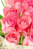 Ein Abschluss oben eines Bündels rosa Rosen Stockbild