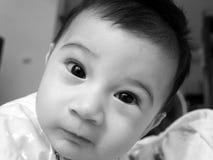 Baby 5 Stockbilder