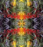 Ein abstraktes Muster von Blumen und von Blättern Stockfotografie