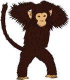 Ein Affe () Lizenzfreie Stockfotos