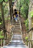 Ein Affe, der aufwärts geht, obwohl ein gelocktes Metall Aufhänger an Yuanjiajie-Berg die Hauptrolle spielt, Wulingyuan-Naturschu Lizenzfreie Stockbilder