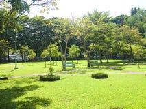 Ein allgemeiner Park Lizenzfreies Stockfoto
