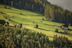 Ein alpines alm, mit seiner grünen Wiese stockfotografie