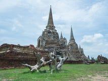 Ein alter Baum-Stumpf-Vordergrund-historischer Tempel in der Welterbstadt, Ayuddhaya Lizenzfreie Stockfotos