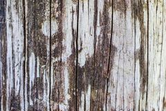 Ein alter Baum Zaun Konzepthintergrund und -beschaffenheit Stockfoto
