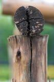 Ein alter gebrochener Baumsupport Lizenzfreies Stockbild
