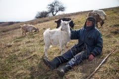 Ein alter Mann in der unordentlichen Kleidung sitzt auf einem Hügel und lebt eine Menge seiner eigenen Ziegen gegen den Hintergru stockfotos